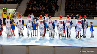 Roller hockey Elite Grenoble vs Amiens 02/05/2015