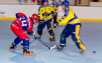 Roller hockey Coupe d'Europe France (Grenoble) vs Italie (Civitavecchia) 31/10/2010