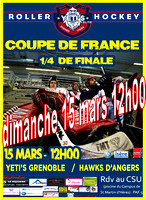 Roller Hockey Coupe de France 1/4 de finale Grenoble vs Angers 15/03/2015