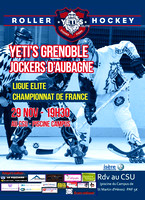 Roller Hockey Elite Grenoble vs Aubagne 29/11/2014
