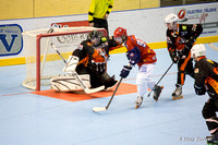 Roller Hockey N2 Grenoble vs Thyez 17/01/2015