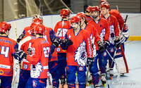 Roller Hockey, Ligue Elite, Championnat de France : Grenoble vs Garges 18/02/2017