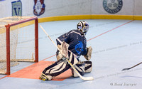 Roller hockey, Nationale 2, Championnat de France, Grenoble vs Villard Bonnot 18/03/2017