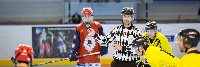 Roller hockey Nationale 2 Grenoble vs Marcy 28/02/2015